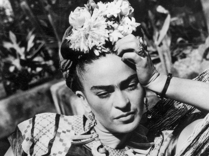 Frida. Viva la vida. Il documentario