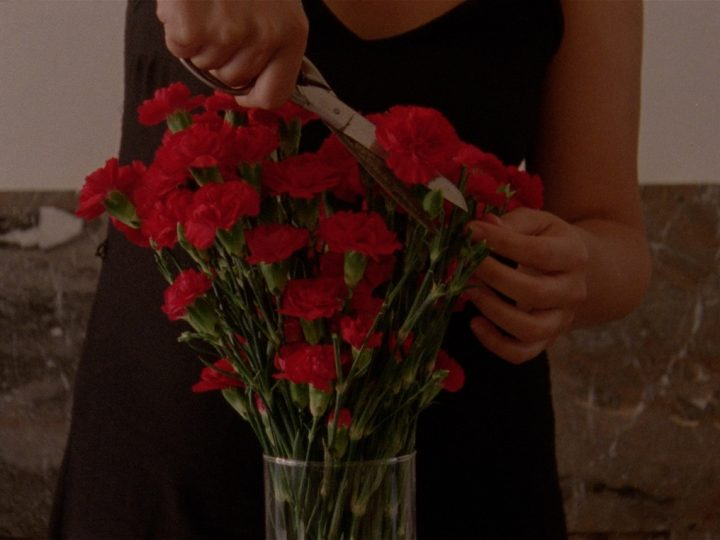Mascarilla 19: Flowers blooming in our throats, di Eva Giolo